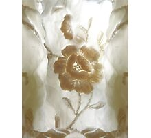 White flower with Ghost Guardians. Photographic Print
