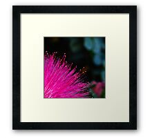 fibre optic pom-pom Framed Print