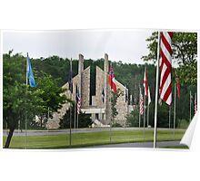 Flags V Poster