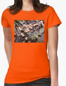 Bird's Nest Cup Fungus Womens Fitted T-Shirt
