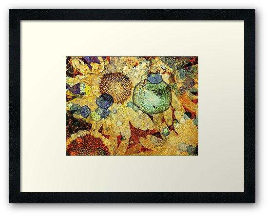 Rust and Flowers by Tara  Turner