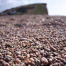 Lyme Regis Gravel by Pig's Ear Gear