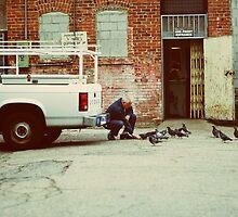 The Man and The Birds by Stephanie Newton