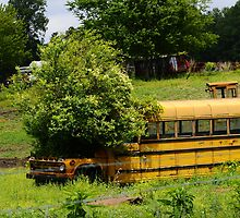school bus planter by George  Close