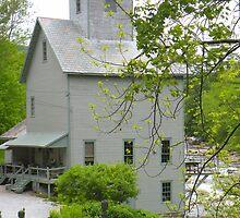 Old Kingsley Mill by Rosalie Scanlon