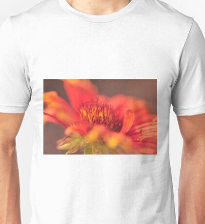 Gallardia, As Is Unisex T-Shirt
