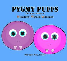 Pygmy Puffs For Sale by GeekyToGo
