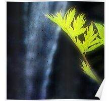 Zen Waterfall Poster