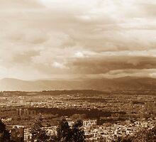Bogotá by Camila Bruce Photography