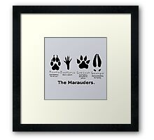 Marauders Animagus Footprint  Framed Print