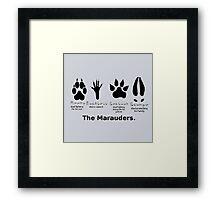 Marauders Animagus Footprint  Framed Print