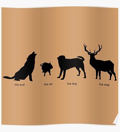 Marauders Full Body Animagus Poster