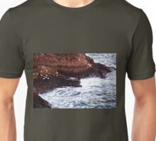 Gulls Rockliffe at Sunset, Slains Castle  (North Sea, Cruden Bay, Aberdeenshire, Scotland) Unisex T-Shirt