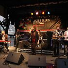 Uncle Jed on stage, Darling Harbour 2010 by muz2142