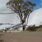 Wellington Dam by mike421