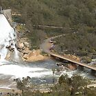 Wellington Dam 3 by mike421