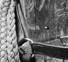 Barcoo Bridle by Jennifer Saville
