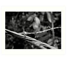 Wires Crossed Art Print