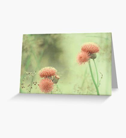 Yesterday's garden Greeting Card
