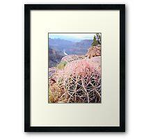 Pink Cactus = MaraMora Framed Print