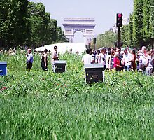 Green Champs Elysees by Moetran