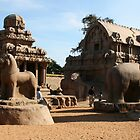Elephant, Lion, Temples in stone by Jane McDougall