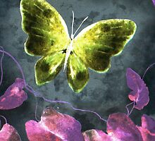 Dreams of Butterflies by writermore