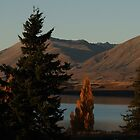 Lake Tekapo at Dusk - New Zealand by JaseMck