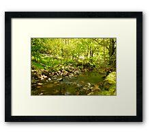 A stream in Glendalough Framed Print