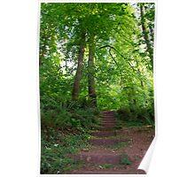 Garden walk, Cockington UK Poster