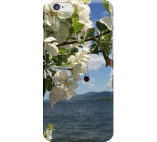 Queen's Crown iPhone Case/Skin