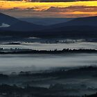 Misty Sunrise by Robyn Lakeman