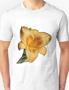 Yellow splendor T-Shirt