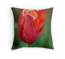 Reddy and Waiting Throw Pillow