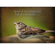 Spirit of the living God, fall afresh on me . . . Photographic Print