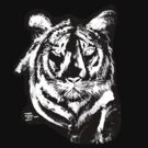 Tiger in Chalk T SHIRT by Shoshonan