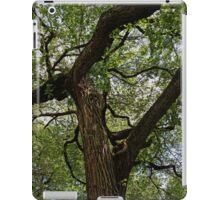 Elm Tree on 20th Street iPad Case/Skin