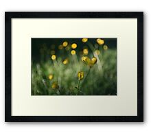 yellow dot Framed Print