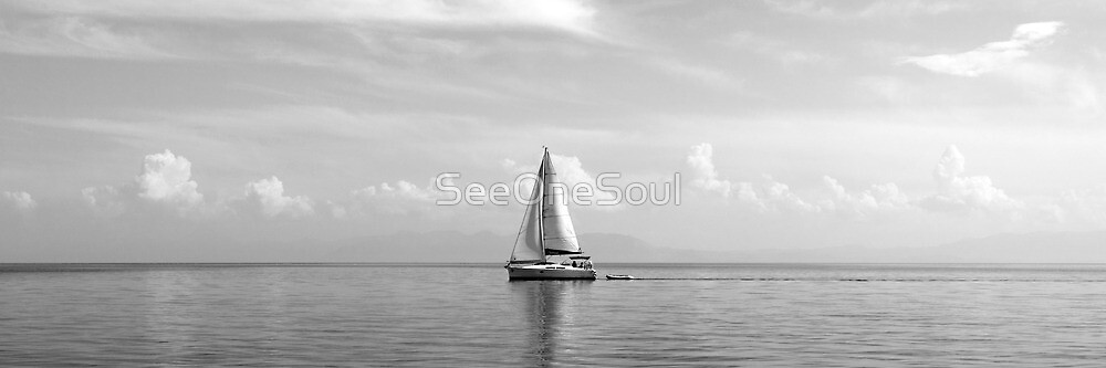Sailing the Seas ... of life by SeeOneSoul