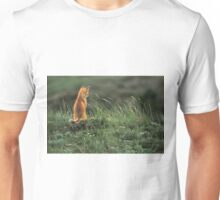 Alone but not Lonely, Fox photo by Donna Ridgway Unisex T-Shirt
