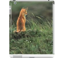 Alone but not Lonely, Fox photo by Donna Ridgway iPad Case/Skin