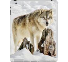 The Drifter iPad Case/Skin