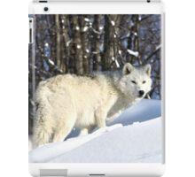 Undeniable iPad Case/Skin