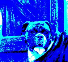 Fizzy The Big Blue Dog. by Chairs