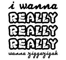 Ziggazigah Photographic Print