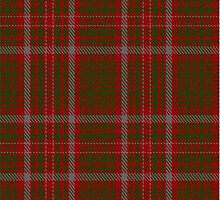 00080 MacIntosh (Ancient) Clan Tartan  by Detnecs2013