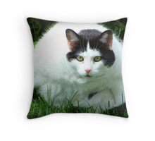 All Fluff No Stuff Throw Pillow