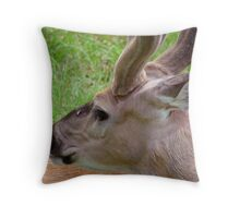 Profile of a young buck Throw Pillow