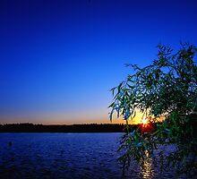 Lakeside Colour : Caldecotte, Buckinghamshire by Nick Bland