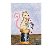 Miss Mouse Knitting Photographic Print